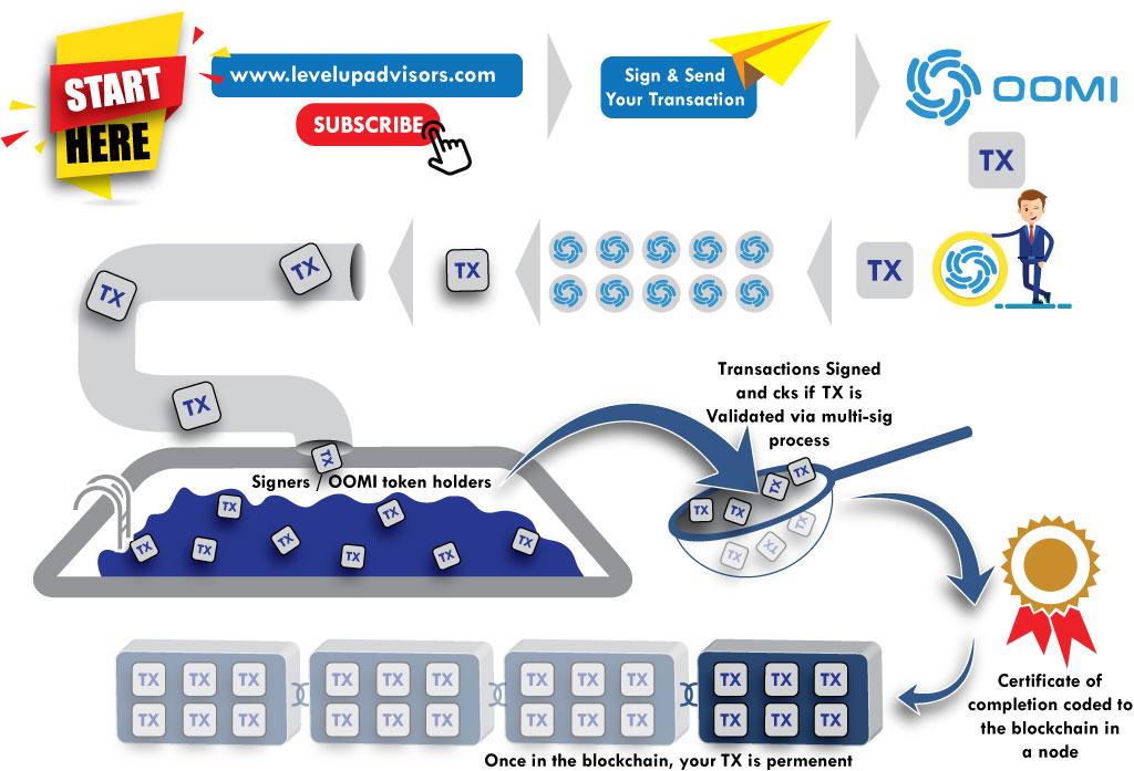 infographic 2 v02